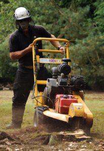 hertfordshire-tree-company-12-206x300