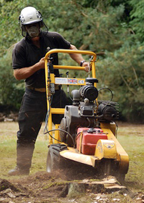 stump grinding London
